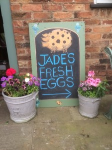 Jade-eggs-Brandreth-Barn